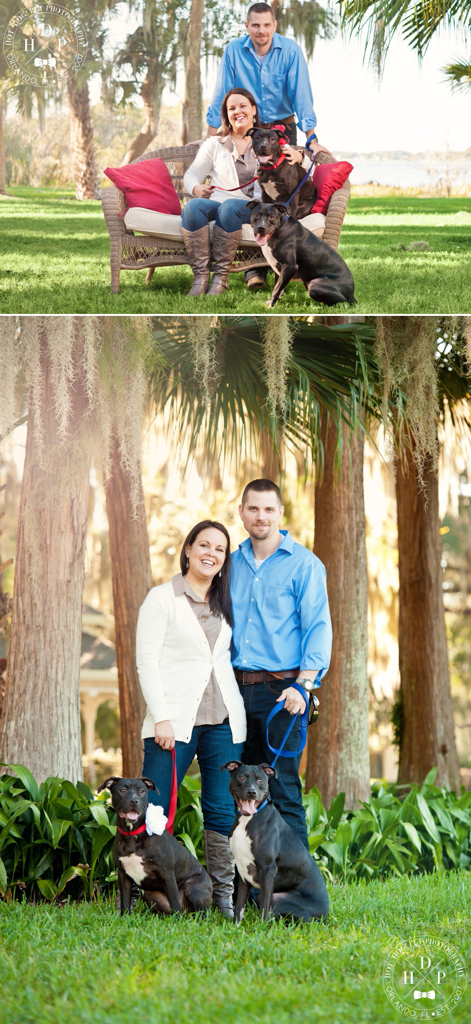 Orlando Pet Photography