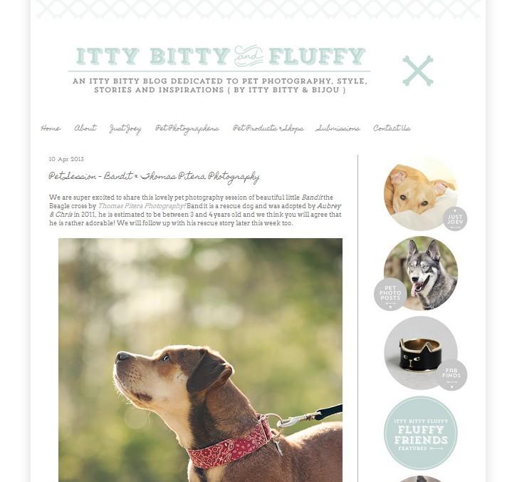 Itty Bitty & Fluffy Bandit & Thomas Pitera Photography
