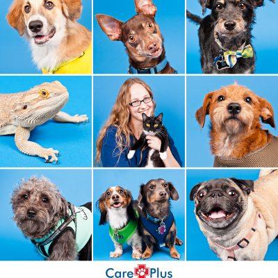 Care Plus Veterinary Clinic Open House   Ocoee, FL