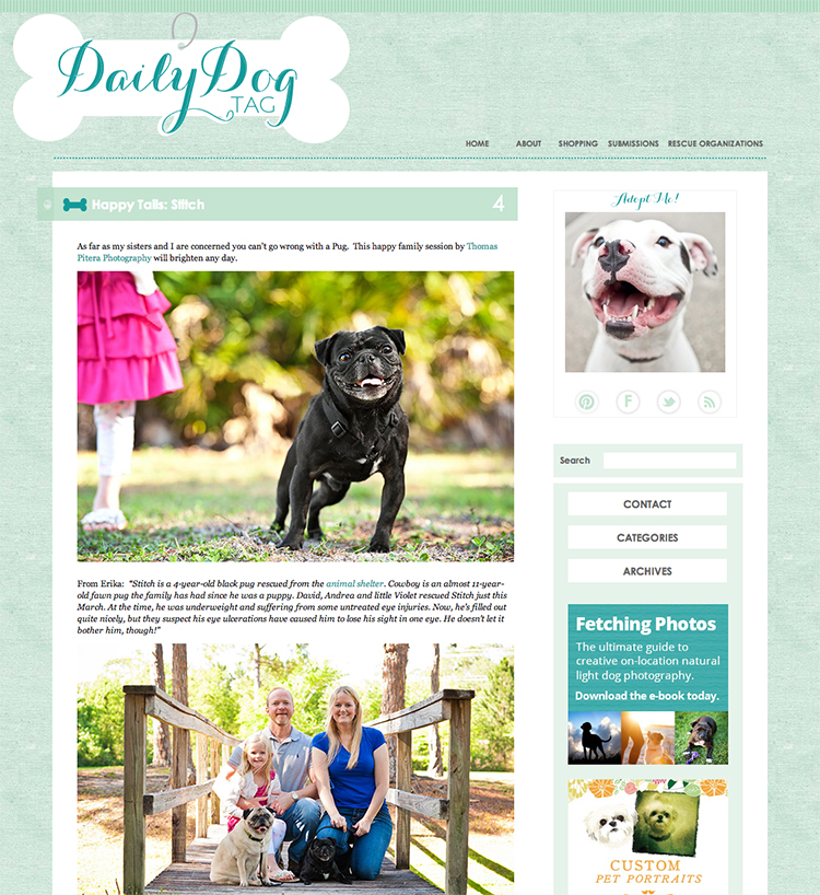 Featured – The Daily Dog Tag – Stitch