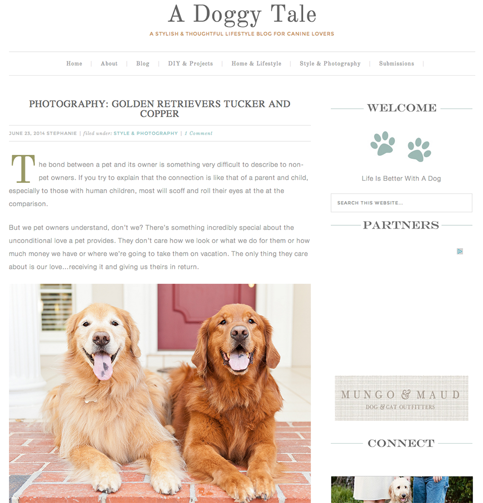 featured-doggy-tale-tucker-copper