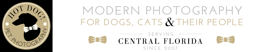 Hot Dog! Pet Photography logo