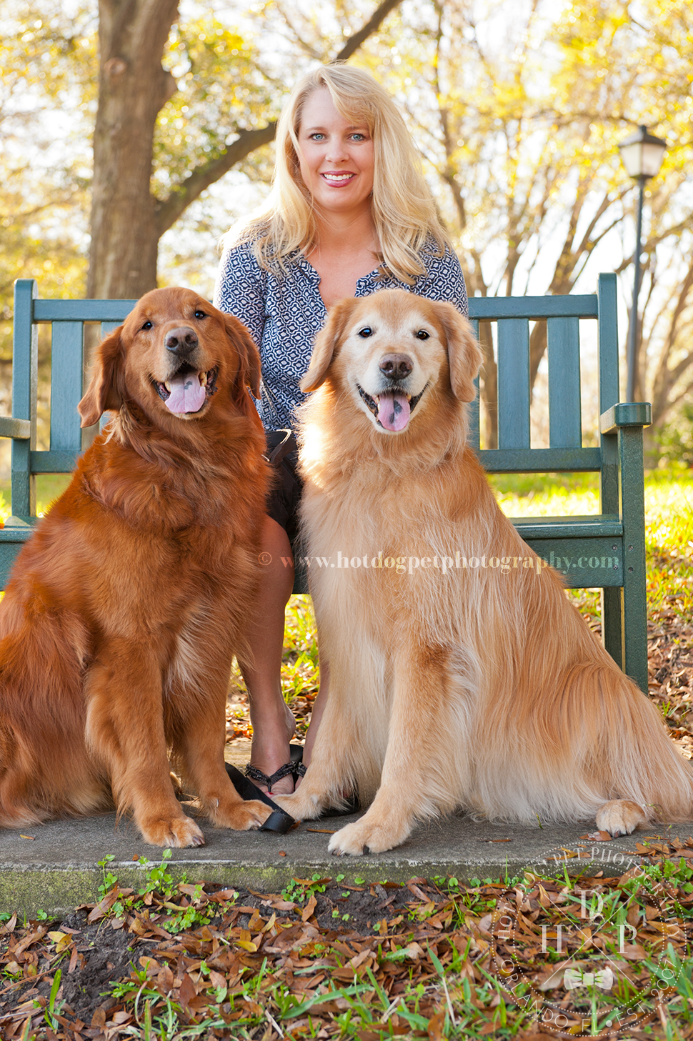 Orlando Pet Photography by Hot Dog! Pet Photography